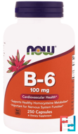 B-6, 100 mg, Now Foods, 250 Capsules