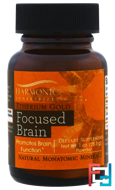 Etherium Gold, Focused Brain, Harmonic Innerprizes, 1 oz Powder (28.3 g)